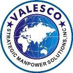VALESCO-SMS (STRATEGIC MANPOWER SOLUTIONS) INC logo